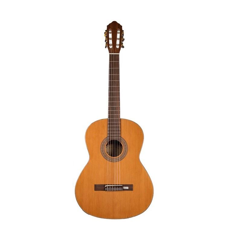 Konzertgitarre 4/4 Ribera Proll